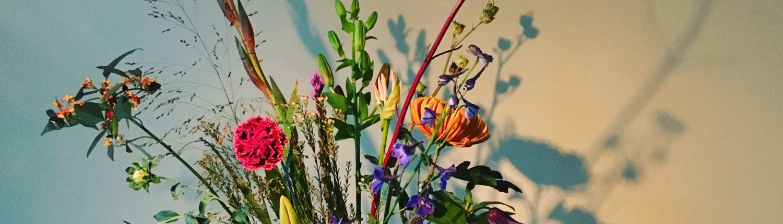 Bloemen abonnement Haarlem november 2017